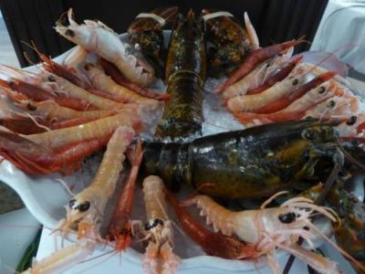 新鮮魚介の美味しいレストランです