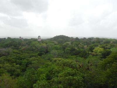 ティカル国立公園