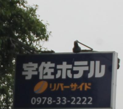 宇佐ホテルリバーサイド