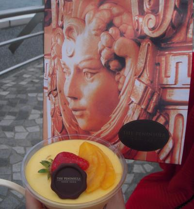 ペニンシュラ ショッピング アーケード (半島酒店商場)