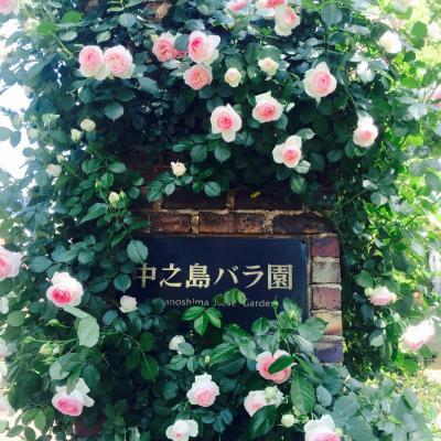 バラのシーズンは必見!
