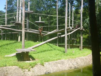 家族でのんびりできる動物園