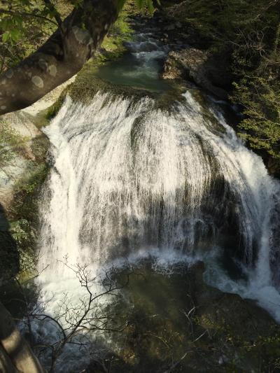 大滝ドライブイン 泉や