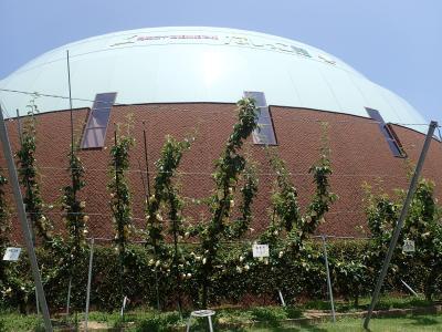 鳥取二十世紀梨記念館
