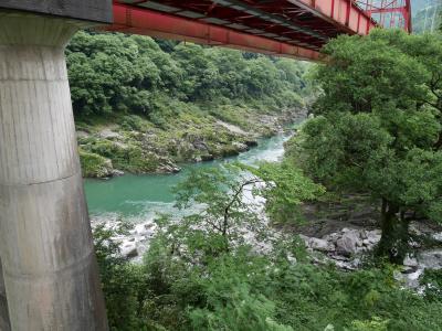 峡谷の湯宿 大歩危峡まんなか 写真