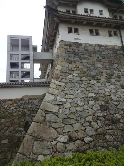 名古屋城 天守の石垣