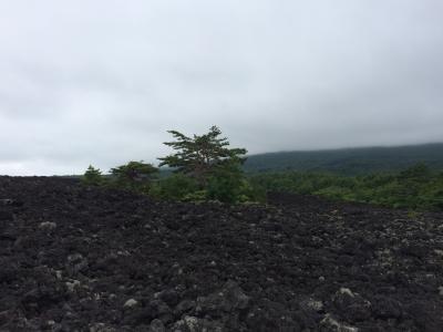 焼走り熔岩流