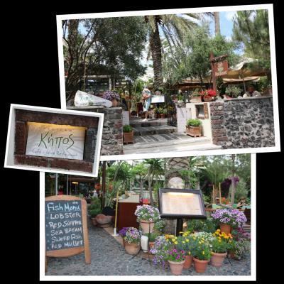お庭が素敵なカフェ兼ワインレストラン