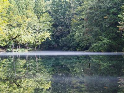 龍ケ窪の池