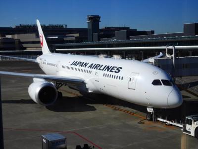 JAL運行のアメリカンで利用