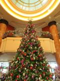クリスマスシーズンならなお良し