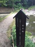 小石川後楽園 渡月橋