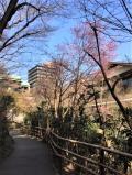 のんびりと庭園を散歩