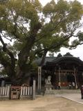 石切劔箭神社
