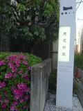 然花抄院 京都室町本店