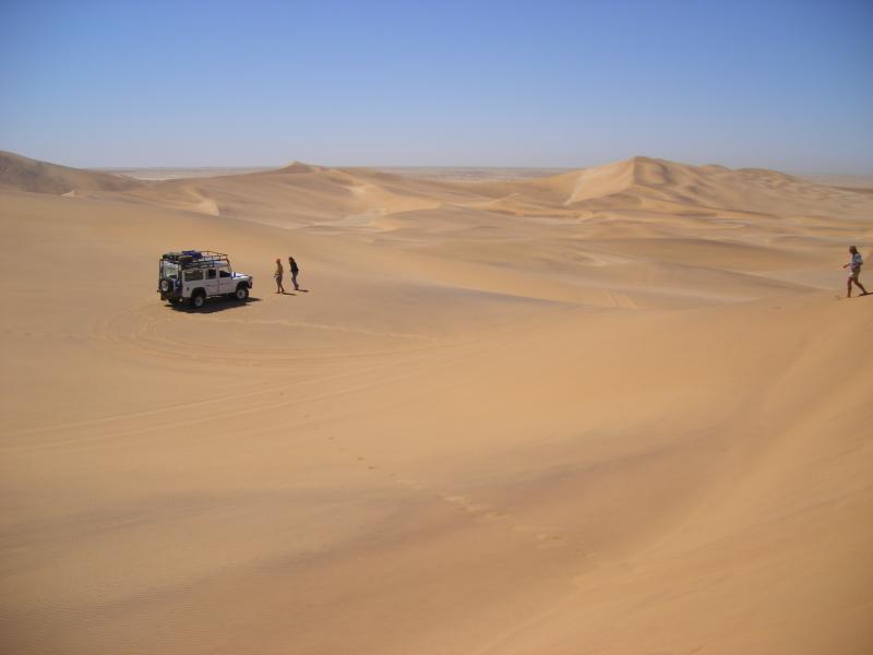 ナミブ砂漠の画像 p1_34