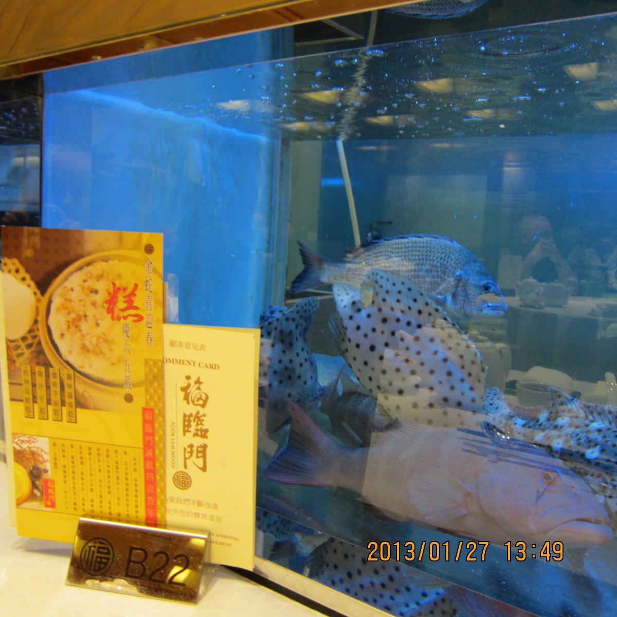 香港でグルメ(広東料理)を満喫するならここ