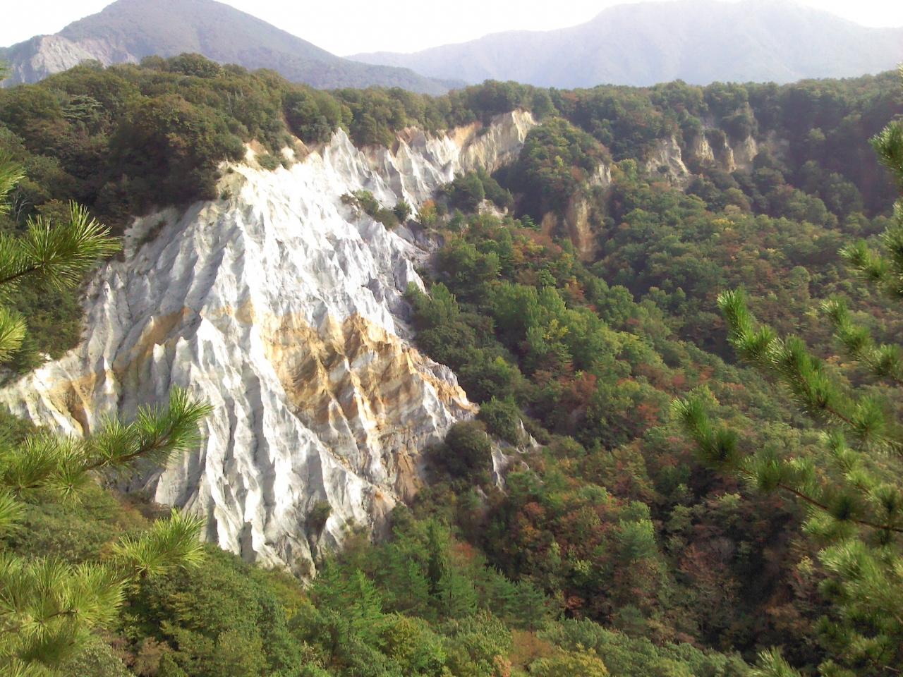 白神山地の画像 p1_33