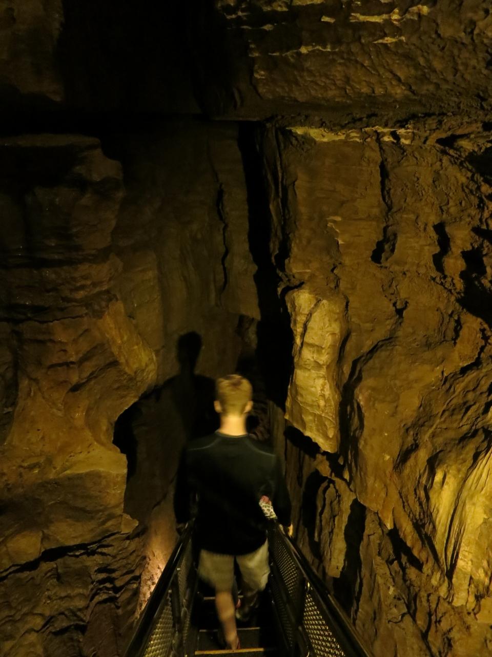 マンモス・ケーブ国立公園の画像 p1_26