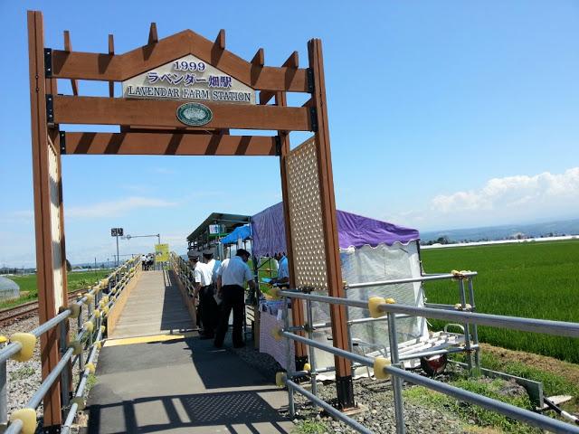 富良野の駅 ランキング