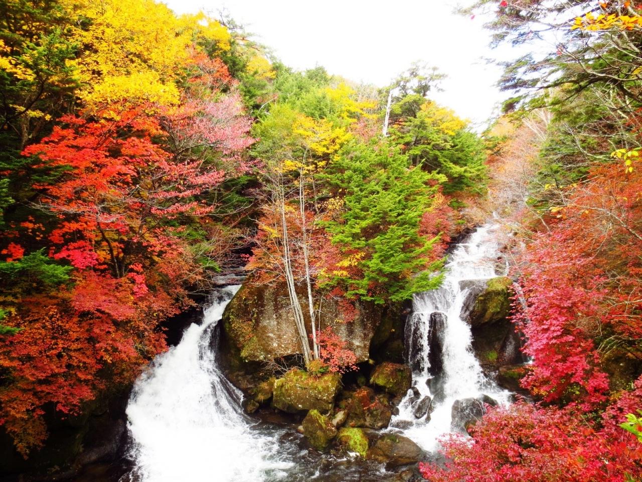 竜頭ノ滝の紅葉