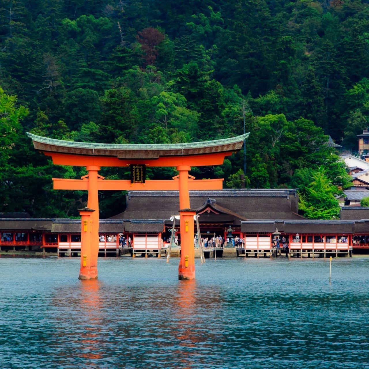 厳島神社の画像 p1_39