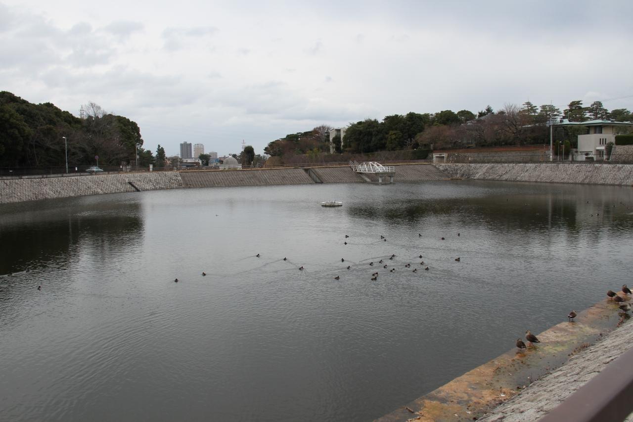 満池谷・ニテコ池のクチコミ(1ページ)