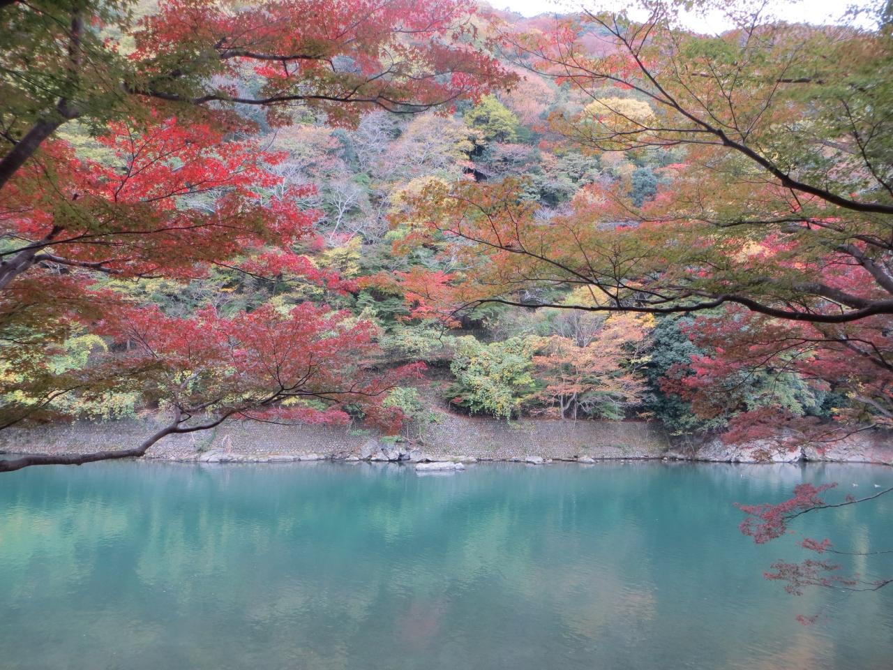 嵐山・嵯峨野・太秦・桂の公園・植物園 ランキング
