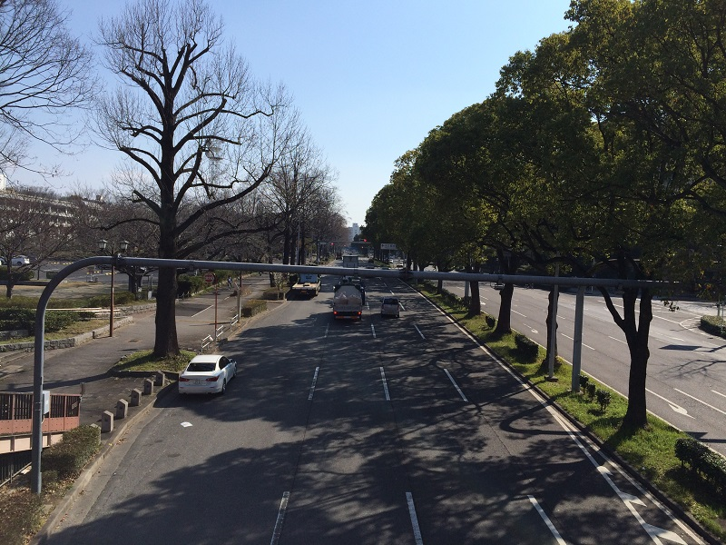 愛知県道215号田籾名古屋線 (出来町通り)