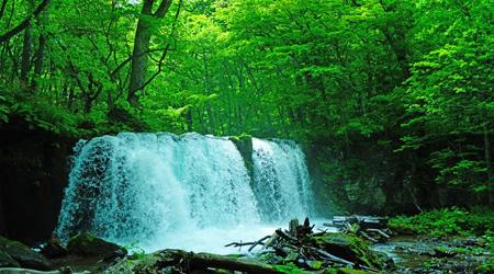 新緑の奥入瀬・十和田湖