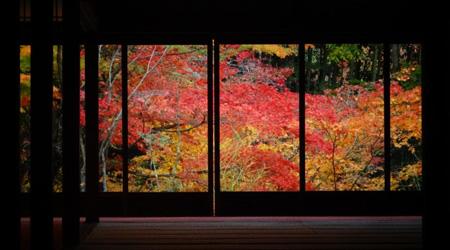 京都さんぽ:紅葉の南禅寺 天授庵