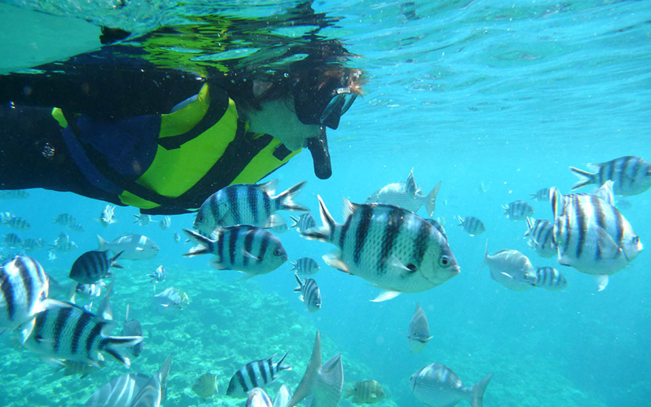 美しい沖縄の海を大満喫!マリンアクティビティのご案内