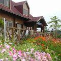 写真:ペンション・喫茶 南の楽園