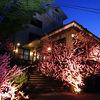 甲州料理とワインの宿 千年湯 岩下温泉旅館