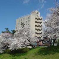 岡崎第一ホテル 写真