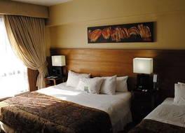 ホテル パナメリカーノ 写真
