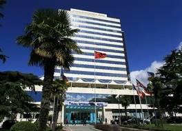 ティラナ インターナショナル ホテル & カンファレンス センター