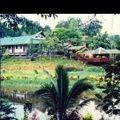 写真:セピロック ジャングル リゾート