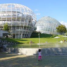 眺め良し!芝生が気持ち良くて、子供から大人まで楽しめる公園。