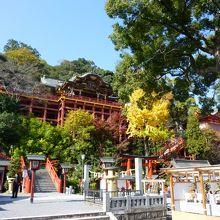 祐徳稲荷神社・・・「日本三大稲荷」のひとつです。紅葉シーズンが絶対お勧め!