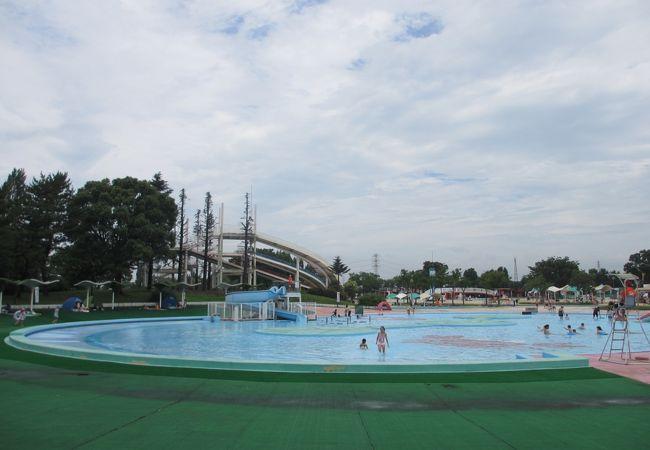 県営しらこばと水上公園