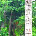 写真:国史跡「種里城跡」