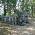写真:村上義光墓