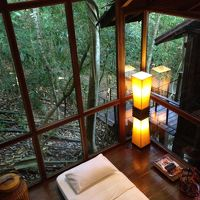 リビングルームの外はジャングル (エキストラベッド設置)