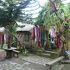 バリ・アガの住む素朴な村