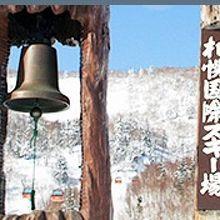 札幌市中心部から程近い本格的スキー場