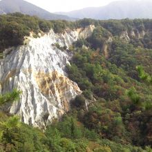 世界遺産白神山地