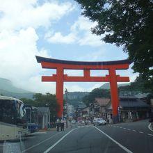 芦ノ湖の周遊道路を走っていると直ぐに分かります。
