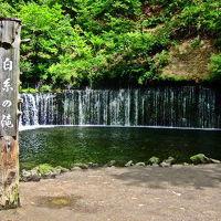 白糸の滝 写真