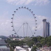 シンガポール フライヤー